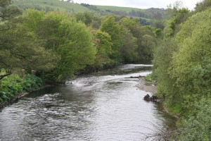 Beeches Pool from the Aqueduct - Milton Beat