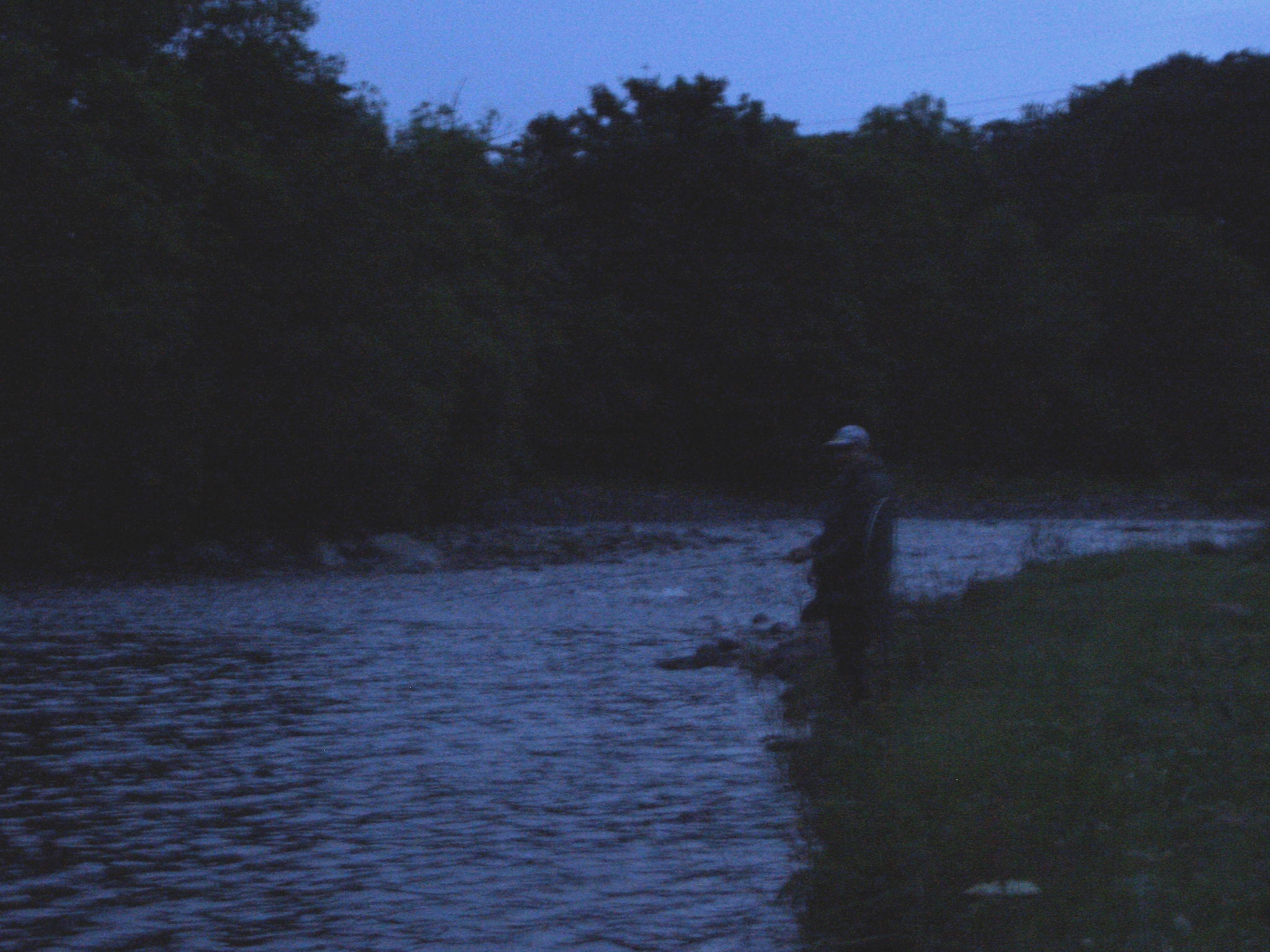 Night fishing for sea trout finavon castle bulletin for Trout fishing at night