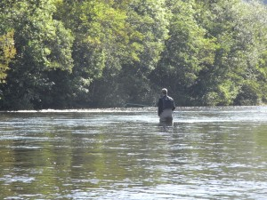Lower Boat Pool & the head of the Flats in ideal water for an early autumn salmon