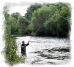 Fishing Tollmuir Pool