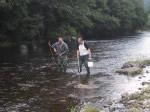 Electro fishing to monitor juveniles