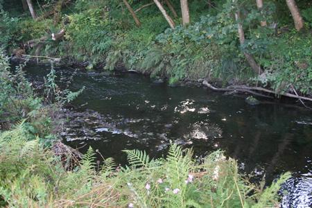 Lemno Burn low water stream
