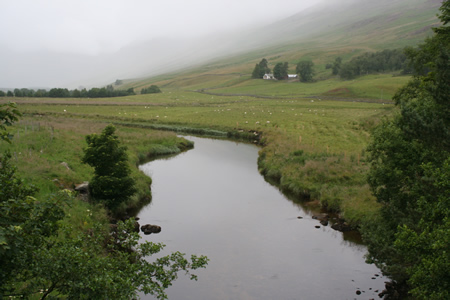 Glen Clova great juvenile habitat